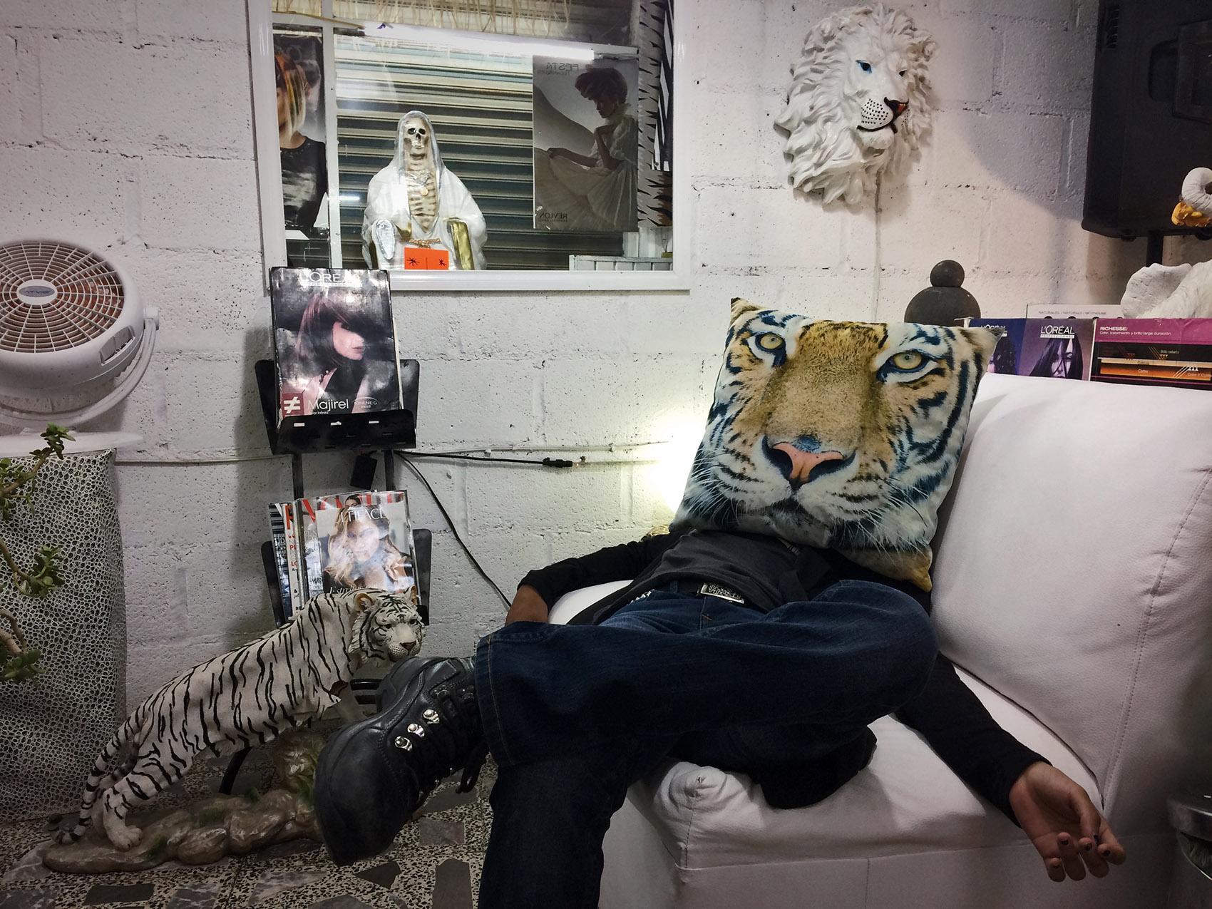 Tigre por Ockesaid a.k.a Joel Lugo - Street Photographer